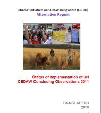 CIC BD alternative report